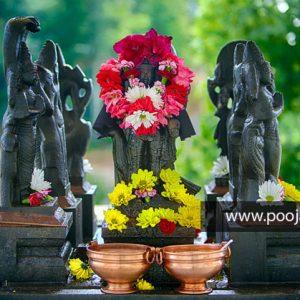 Navagraha & Nakshatra Dosha